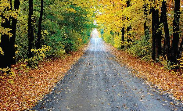 Prince Edward County Ontario